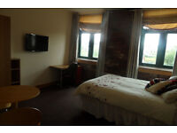 * LUXURY STUDIO APARTMENT * STUDENTS / WORKING PROFESSIONALS* FULLY FURNISHED *