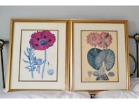 2 Gold Framed Reprint Pictures of Study of Flowers