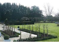 Garden Maintenance Operative / Horticulturalist