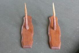 Antique/Vintage Horn Gun Rack/Mount - Taxidermy interest