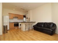 Large 3 Double Bedroom Flat with a Garden - Perfect for students who want to BBQ