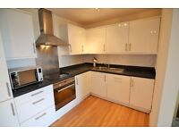 Stunning 'must see' furnished 2 bed executive flat in the very heart of Reading - KENNET STREET