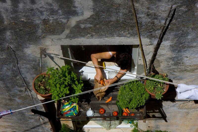 Mit Urban Gardening kommt frisches Obst, Gemüse und Salat vom Balkon auf den Teller.