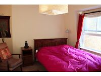 Lovely clean and quiet double room for female - £220/week all inc. - in female flatshare