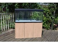 Fluval Roma 240 litre fish tank with 305 filter, air pump and lots of accessories