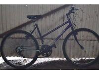 Ladies Raleigh Cassis Push Bike