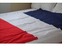 3 France flags