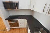 Newly Renovated 1+Den in Roncesvalles