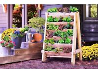 Vertical Herb (or Lettuce) Planter - Hand made from reclaimed wood