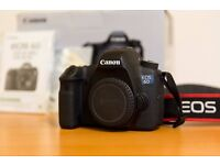 Canon 6D Body (Wifi). Less than 6000 shutter count.