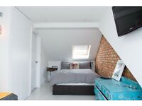 Lovely entire floor loft conversion room with en-suite close to London Professionals Only