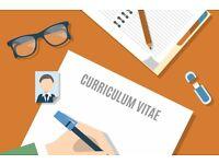 Personal CV Writing & Improvement Services - read description