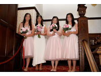 Bridesmaid Dresses, Bridesmaid Prom Party Dress, by Phase Eight, Pale Pink, size 12 and size 14