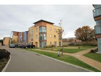 Modern 4 bedroom town house 8 Bluebell Way