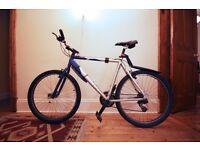 """Dawes Mountain Bike (Tekarra) 22"""" Frame"""