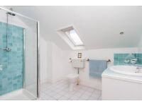 Bath , glass shower cubicle, toilet x2, sink x2, radiators etc