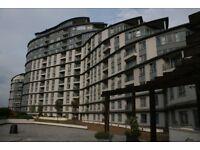 1 Bedroom Flat to rent Centrium Surrey-NO FEES