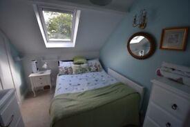 Talbot Woods: Brand new luxury double bedroom with en suite shower in lux top floor attic apartment
