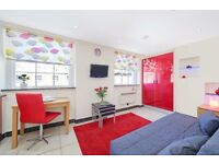 ATTENTION STUDENTS!! FANTASTIC STUDIO APARTMENT IN BAKER STREET