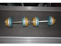 Pair of 13kg cast iron weights dumbbells / dumbells, perfect for home gym
