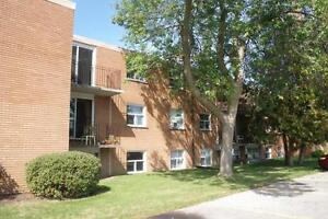 240 Southwood Drive - Two Bedroom Apartment Apartment for Rent Cambridge Kitchener Area image 3