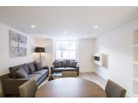 BEAUTIFUL LUXURY ONE BEDROOM FLAT! BAYSWATER/NOTTING HILL AREA! AVALIABLE NOW!