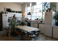 Bright Studios available in Seven Sisters
