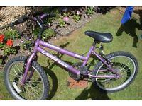 purple childs bike