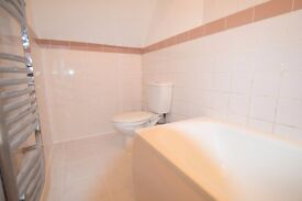 1 Bedroom flat with garden on Durnsford road, Wimbledon, SW19