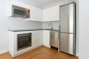 Fully Renovated 1 BR in Queen West (QUEEN ST W & NIAGARA)