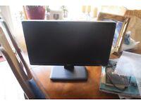 HD Dell Monitor