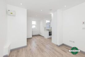 brand new modern 1 bedroom flat with roof terrace