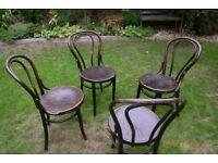 Four Mundus & Koln bentwood chairs