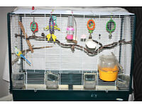 Bird Cage with Accessories Plus Birds Toys