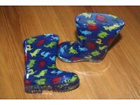 Dinosaur Blue Unisex Wellington Boots