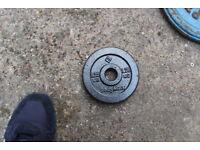 Weight BodyMax 1x1,25 kg