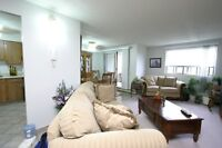 Southend Apartments - 1 Bedroom Apartment for Rent