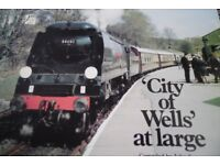 CITY OF WELLS AT LARGE BOOK