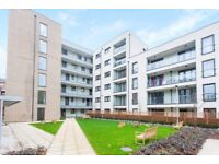 Stunning 1 bed apartment located in Bow E3, Close to Dlr and shops, Available NOW-TG