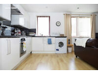 Amazing 1 bedroom apartment in