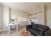 BEAUTIFUL NEW ONE BEDROOM FLAT - BE THE FIRST ONE TO LIVE IN THIS PROPERTY- CENTRAL LONDON