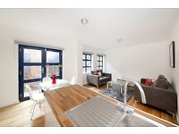 Brand New 2 double bed 2 bathroom mews HOUSE with parking and bike storage close to Oval&Stockwell