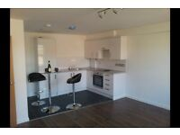 1 bedroom flat in Chelmsford CM1, NO UPFRONT FEES, RENT OR DEPOSIT!