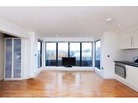 Right By Regents Park & Primrose Hill, Own Terrace, Modern, Wood Floors, Mins From Camden