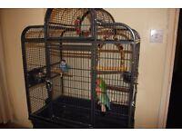 Montana Bird Cage