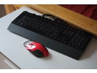 Microsoft Sidewinder Keyboard and Enzatec Mouse