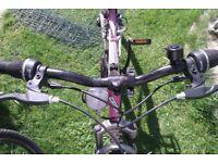 Trax pink girls bike