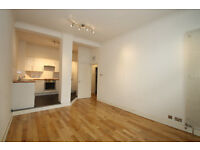 Modern two bed apartment in the heart of Clerkinwell, Features a gym with a Roof Terrace
