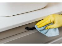 Domestic cleaning service £12 per hour