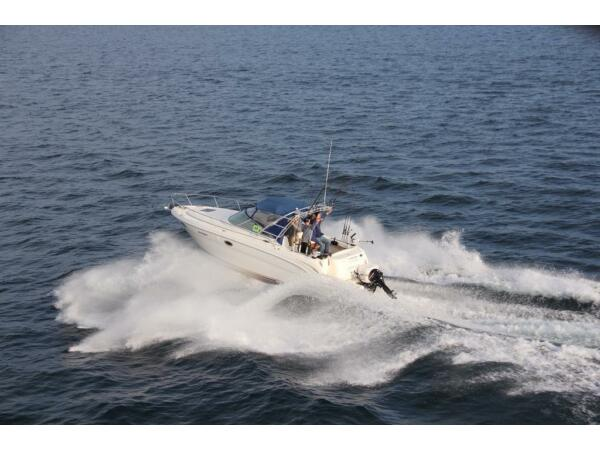 Used 2001 Sea Ray Boats Amberjack